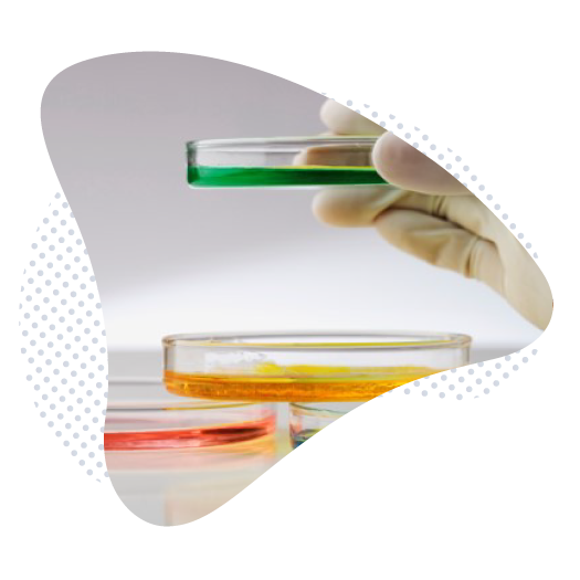 présentation organisation ACM Pharma